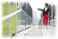Woman and Seeing Eye Dog catching a train